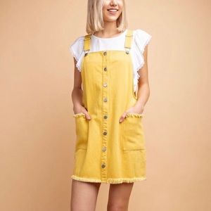 Adorable Anthropologie Look Boutique Overall Dress